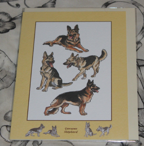 GERMAN SHEPHERD GREETINGS CARD with pictures of the breed